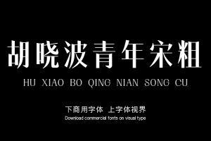 胡晓波青年宋粗-字体设计