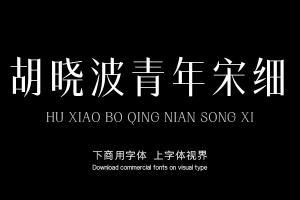 胡晓波青年宋细-字体大全