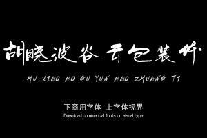 胡晓波谷云包装体-字体设计