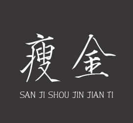 undefined-三极瘦金简体-字体设计