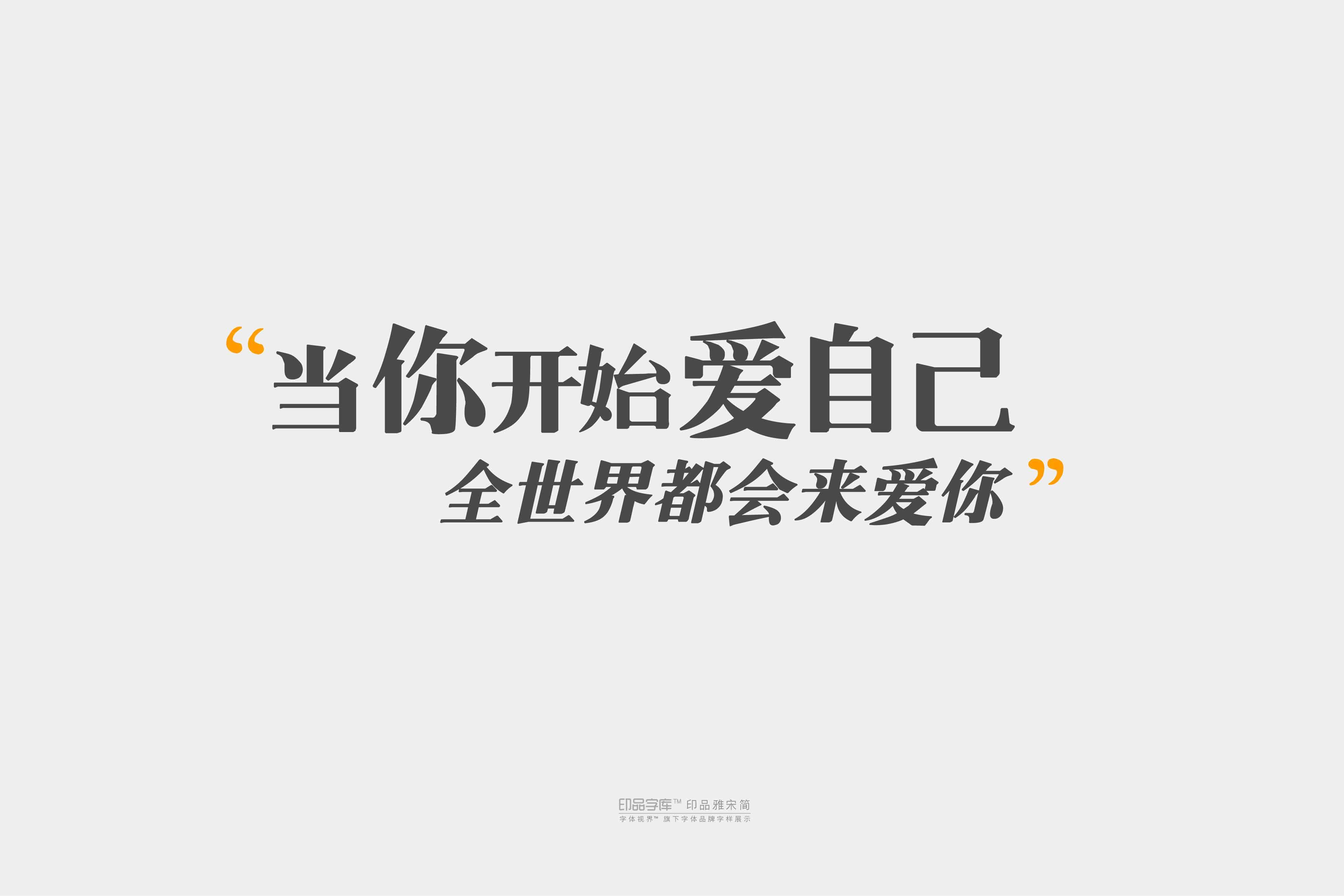 印品字库-印品雅宋简 中黑-字体设计