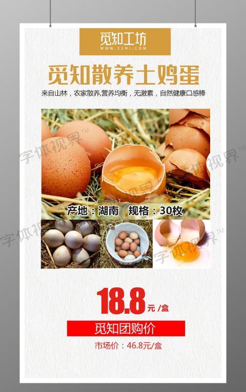 简约大气散养土鸡蛋促销团购宣传美食海报
