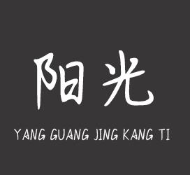 undefined-阳光靖康体-艺术字体